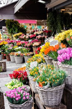 Flower Shop Decor, Flower Shop Design, Amazing Flowers, Fresh Flowers, Beautiful Flowers, Flower Truck, Flower Farm, Flower Stands, Garden Shop
