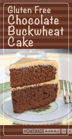 Gluten Free Chocolate Buckwheat Cake - Brilliant! No weird gluten free flour mixes at ALL! Decadent and Delicious! | www.homemademommy.net