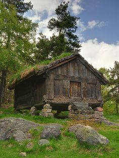 Real Viking's house, Norway - a stabbur where food was kept traditionally through winter. smoked meats and fish, root vegetables etc.