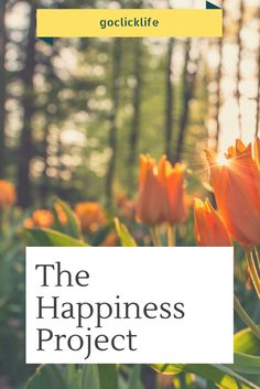 The Happiness Project  Everyone has their bad days and their good ones. However it's frustrating when you see positive people become suddenly sad as they communicate with others. This my friends, is caused by a positive and negative energy effect.  #happiness #lifestyle #blog