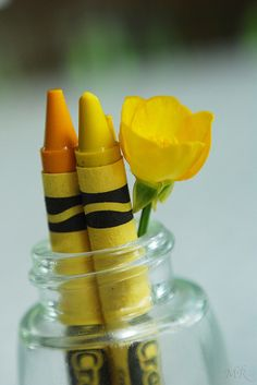 Yellow | Giallo | Jaune | Amarillo | Gul | Geel | Amarelo | イエロー | Kiiro | Colour | Texture | Style | Form | Pattern | Crayons