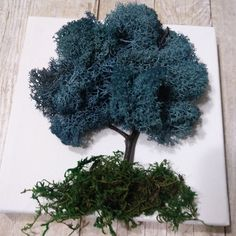 Trees are sprouting up around here! Creating some preserved moss trees for you. Moss Wall Art, Moss Art, Diy Wall Art, Wall Decor, Moss Decor, Plant Art, Arte Floral, Handmade Home Decor, Wall Sculptures