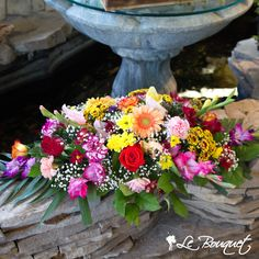A gorgeous mix of the brightest colours and seasonal flowers arranged perfectly in a centerpiece is ready to take center stage on your table! Bouquet, Seasonal Flowers, Center Stage, Flower Arrangements, Centerpieces, Celebration, Floral Wreath, Wreaths, Colorful