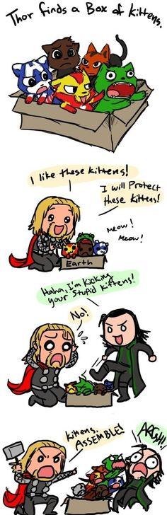 Lol kitten avengers and loki's face in the last frame