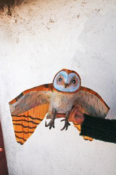 Owl decor bird decor hanging ceiling animal art by tundrataiga