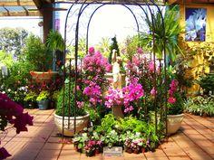 Beautiful display to a Garden Nursery, Essendon. Photo by Dana Bonn. Australia.