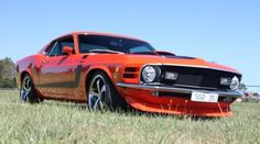 Limousine King's 1970 Orange Mustang is a true American muscle car designed to take you to your Wedding or Special Occasion. Visit us online for a free quote. American Muscle Cars, Limo, Mustang, Melbourne, Special Occasion, Quote, Orange, Free, Wedding