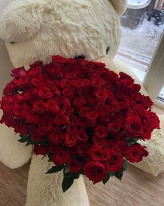 Image about fashion in flowers and sweets by H. Luxury Flowers, My Flower, Pretty Flowers, Flower Power, Photo Deco, Rose Wallpaper, Flower Aesthetic, Beautiful Roses, Red Roses