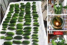 Gustare grecească pentru iarnă - sănătoasă și hrănitoare, ideală pentru zilele geroase! - Bucatarul Sprouts, Zucchini, Watermelon, Fruit, Vegetables, Cooking, Food, Funguje To, Massage