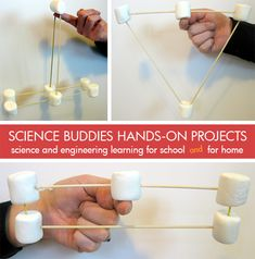 Circus Science: use marshmallows and skewers to explore distribution of mass and balance! [Source: Science Buddies, http://www.sciencebuddies.org/blog/2013/04/weekly-science-project-idea-home-science-activity-spotlight-circus-science.php?from=Pinterest] #STEM #scienceproject #familyscience