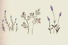 FLOWER FLOWER: 야생화 세 가지