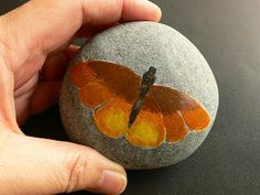 Craft for the Crafty: How to do Rock Painting?-Butterfly Tutorial