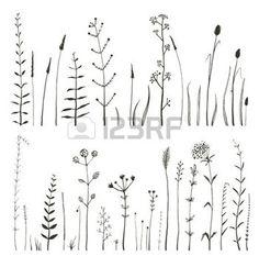 дикие цветы Фотографии, картинки, изображения и сток-фотография без роялти