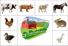 Animal Activities, Kids Learning Activities, Teaching Kids, Farm Animals, Animals And Pets, English Primary School, Kindergarten, Mission Projects, Farm Theme