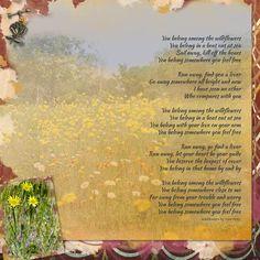 Wildflowers song lyrics by Tom Petty Tom Petty Lyrics, Sing To Me, Love Is Free, Running Away, Music Lyrics, Over The Years, Wild Flowers, Poetry
