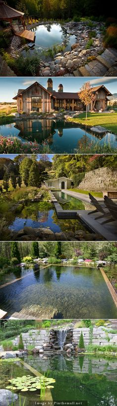 inspirational natural swimming pools - personal favorite is the 2nd one on the list.