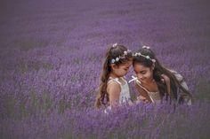 Lavender Field Photo Shoot  Hampshire Photographer