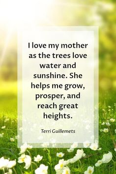 Mothers Day Quotes | I love my mother as the trees love water and sunshine. She helps me grow, prosper, and reach great heights. ~ Terri Guillemets