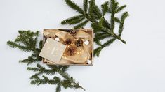 Organisez une belle boite remplie de surprises ou de décorations typées sur l'univers de Noël ! Decoration, Gift Wrapping, Gifts, Tiny Gifts, Noel, Universe, Money, Gift Wrapping Paper, Decorating