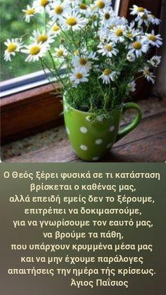 Christianity, Prayers, Religion, Herbs, Plants, Herb, Religious Education, Planters, Plant