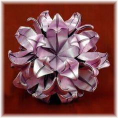Hoya origami