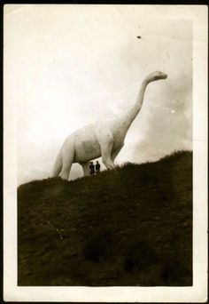 this isnt happiness™ - photo caption contains external link Dinosaur Age, Cute Kids Crafts, Weird Vintage, Still Life Photos, Photo Caption, Roadside Attractions, Weird World, The Good Old Days, Photomontage