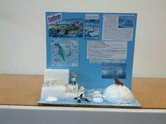 Ocean Habitat Project Biome Project, Project 4, Science Fair Experiments, Ocean Habitat, Ocean Projects, Tide Pools, Research Projects, Biomes, Antarctica