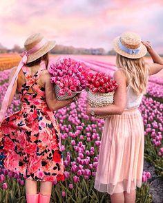 Tulips Amsterdam Tulips, Tulip Fields, Hello Spring, Besties, Bff, Ana Rosa, Bridesmaid Dresses, Wedding Dresses, World Pictures