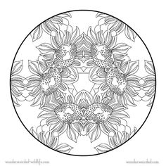Sunflower Mandala Coloring PagesFree Flower Pages