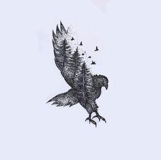 Eagle by Basha Alfred