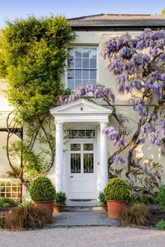 Which wisteria? Stay in the wisteria-covered Rosemoor House Wisteria Trellis, Wisteria Tree, Garden Trellis, Wisteria Garden, Wisteria Tunnel Japan, Wendy House, Garden Spaces, House Front, Victorian Homes