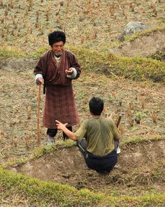 The fields . Bhutan