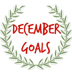 December Goals 2017  Vanessa Hicks Photography