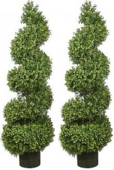 Two 46 Inch Artificial Boxwood Spiral Topiary Trees Potted Silk Tree Warehouse http://www.amazon.com/dp/B00EOAODW8/ref=cm_sw_r_pi_dp_2I5Svb1XM4KFM