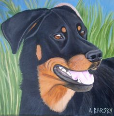 Ebéne Beauceron artist Amanda Barsby dog art https://www.facebook.com/pages/Art-by-A-Barsby/268280196610002
