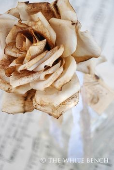 roses made from coffee filters