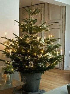 How to decorate Christmas tree. Easy steps to decorate Christmas tree. How to create perfect Christmas tree. Easy way to decorate for Christmas.decorating your christmas tree. easy decorating your christmas tree. Christmas Tree Base, Potted Christmas Trees, Noel Christmas, Merry Little Christmas, Country Christmas, All Things Christmas, White Christmas, Christmas Decorations, Xmas Tree
