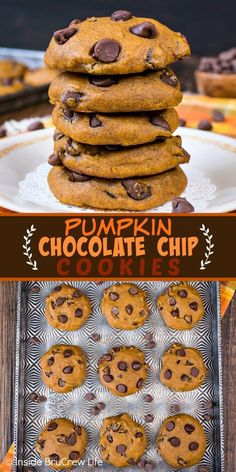 Pumpkin Chocolate Chip Cookies - these soft pumpkin cookies loaded with chocolate are a must make every fall. Make this recipe and watch everyone devour the entire batch in a hurry! #pumpkin #cookies #fall #chocolate #homemade #pumpkindesserts #cookiejar #bakesale
