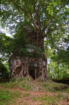 for the faeries ❧ Koh Ker, a remote archaeological site in northern Cambodia