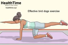 The classic core and spine stabilization exercise, bird dog, has many benefits. Here's a glimpse of the advantages and variations in bird dogs exercise. Bird Dog Exercise, Core Exercises For Beginners, Spine Alignment, Spinal Column, Benefits Of Exercise, Muscles, Raising, Alternative, Strength