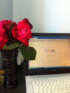 Trandafirii mei...
