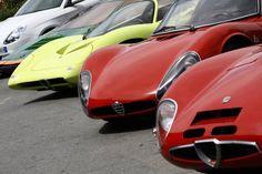 Alfa Romeo TZ1 & Tipo 33 Stradale @Balocco '10