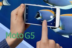 Moto G5 Price, Review, Specifications