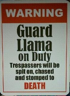Guard llama on duty sign @Kandace Paige can you put up a sign like this please?