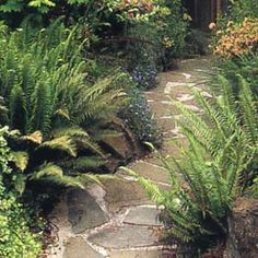 Stone garden path how to - This old house
