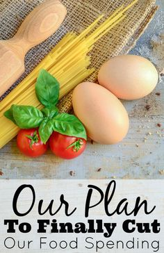 Our Plan To Finally Cut Our Food Spending Food Picture Budget Meals, Food Budget, Budget Cooking, Budget Plan, No Cook Meals, Kids Meals, Snacks Kids, Frozen Appetizers, Cooking With Kids