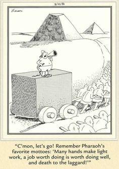 The Far Side Far Side Cartoons, Far Side Comics, Funny Cartoons, Physics Humor, Engineering Humor, Cartoon Network Adventure Time, Adventure Time Anime, Gary Larson Far Side, Gary Larson Cartoons