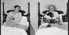 Monkey reading in Bedtime for Bonzo Ronald Reagan Diana Lynn 1951