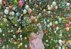 Tree in Saalfeld Germany-decorated with 9,500 Easter Eggs!!! Picture from:Spiegelonline