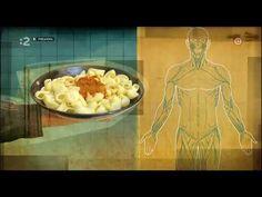 LÉČBA PŮSTEM - francouzský dokument, 2012 - YouTube Nutrition, Youtube, Make It Yourself, Info Video, Ethnic Recipes, Youtubers, Impala, Youtube Movies